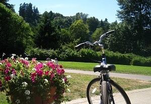 スタート地点にある花と緑の豊かな公園